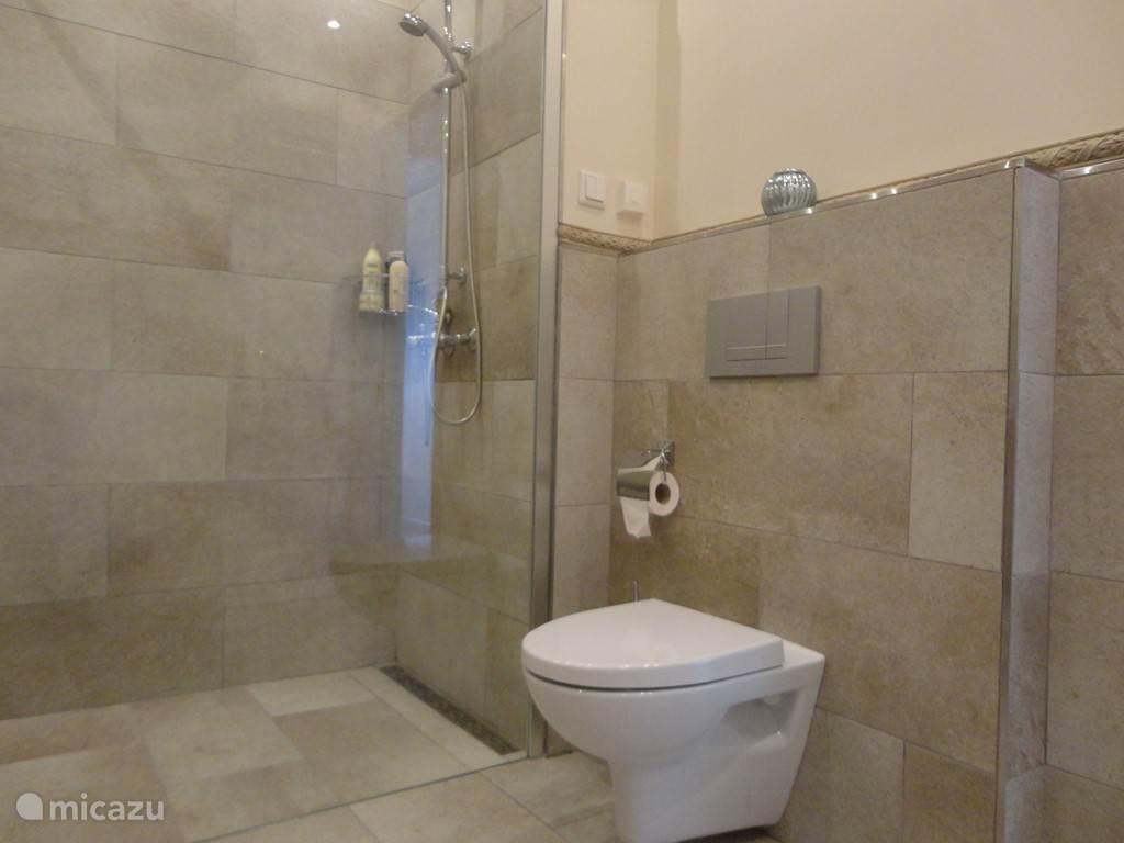 Luxe badkamer met inloopdouche en toilet