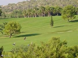 prachtige golfbaan Real de Campoamor