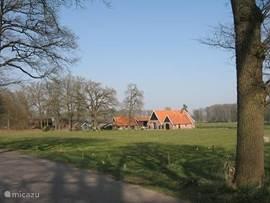 Een van de vele boerderijen in het Woold, die in Saksische bouwstijl zijn uitgevoerd en kenmerkend zijn voor deze omgeving