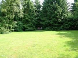 in de verte een bankje (schaduwplekje)onder de bomen achter in de tuin