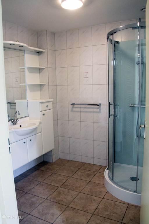 Badkamer beneden met badmeubel en vernieuwde douche.