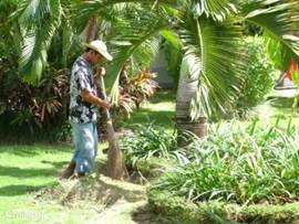Gede, onze tuinman verzorgd iedere ochtend de tuin, zodat alles er altijd piekfijn uit ziet.