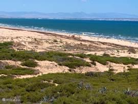 strand Torrevieja