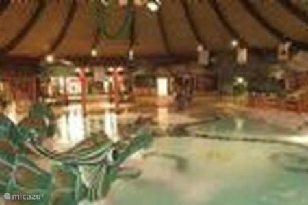 Omgeving - Zwembaden
