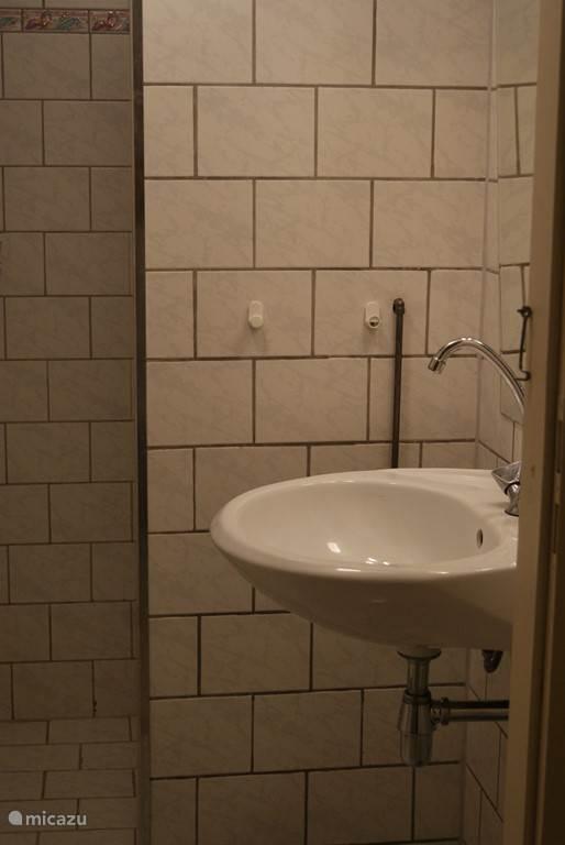 badkamer met douche en wastafel