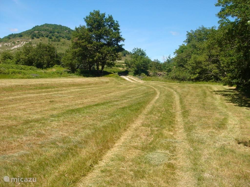 Het pad naar de boerderij.