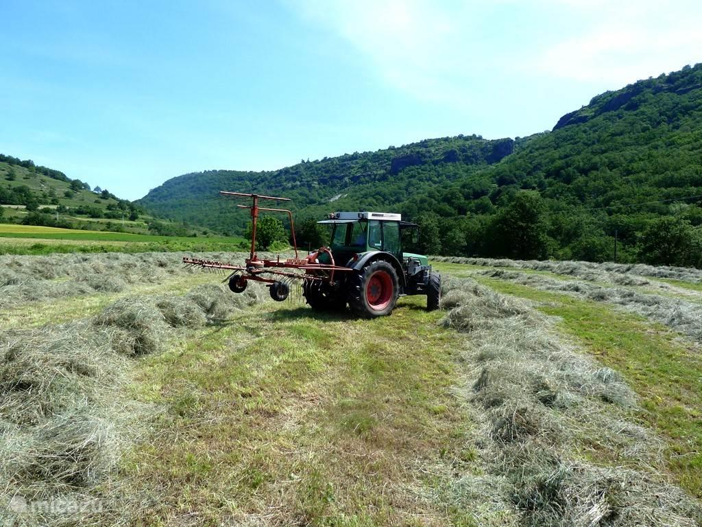 De boer maait voor ons het gras. We hebben de deal met hem gemaakt dat hij dan het gras mag houden.