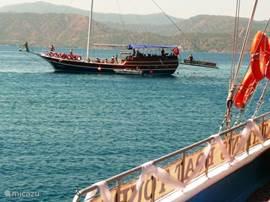 Een 12 eilandentour maken met de boot. Heerlijke dag op het water, zwemmen in de mooie baaien en lekker eten op de boot.