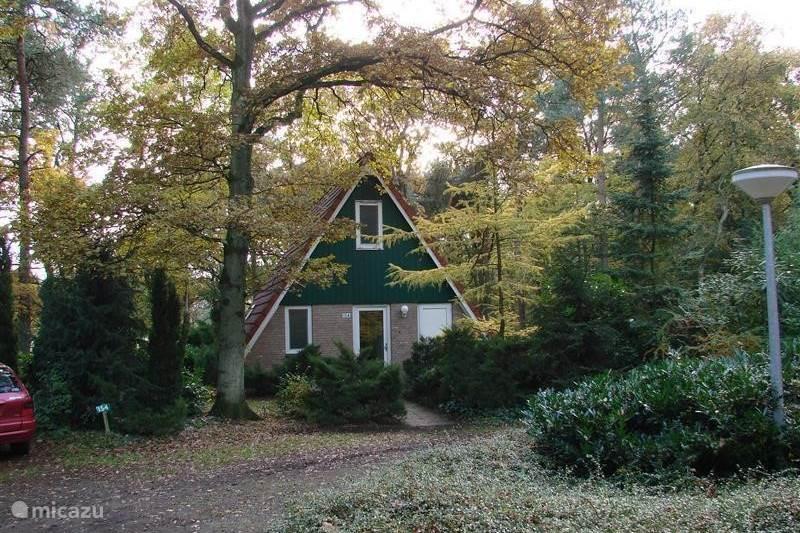 Vakantiehuis Nederland, Gelderland, Harfsen Vakantiehuis Bungalow Motief