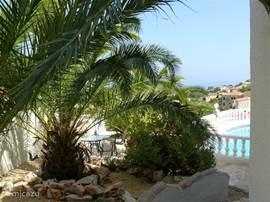 Heerlijke schaduw onder de palmbomen