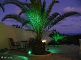 In de avond, gezellig onder de verlichte palmen. Genieten van de rust.