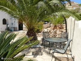 U kunt onder de palmen liggen of zitten uit de zon en even heerlijk relaxen.