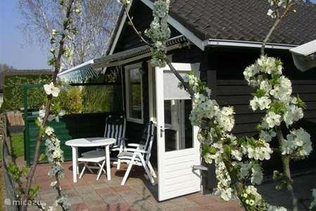 Ferienwohnung Niederlande, Nordholland, Schoorl ferienhaus de Jong Sommerhaus
