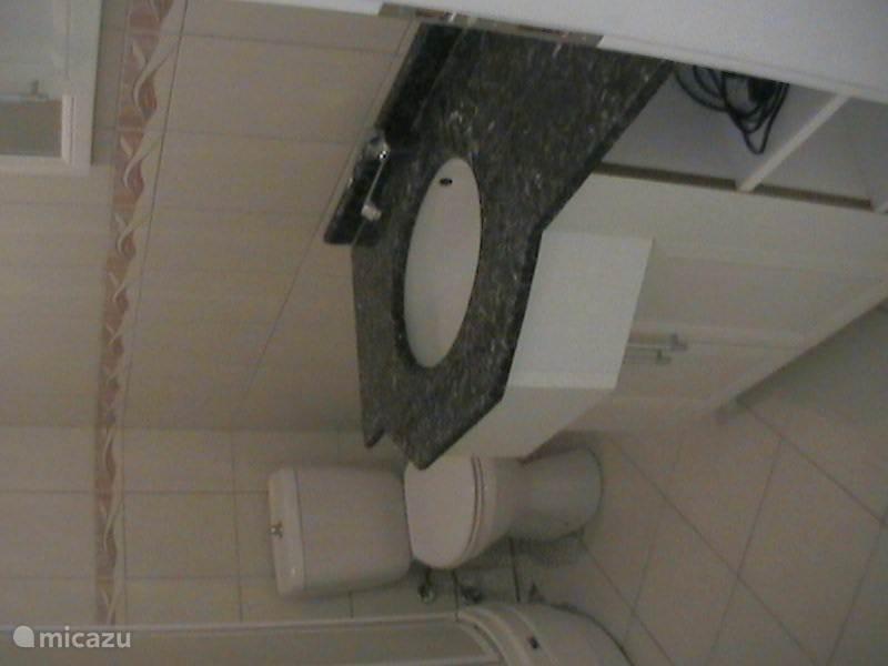 badkamer met wastafel, wc en douche