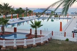 gratis bedden en parasols bij zwembad en strand