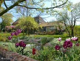 Gastenverblijf De Droomengel (r) gezien vanuit de fraaie tuin van De Nieuwe Engel. Vanaf het tuinterras aan de voet van de dijk heeft u vrij zicht op de sier- en fruittuin, de molen Houdt Braef Stand en kunt u heerlijk in 't zonnetje zitten.