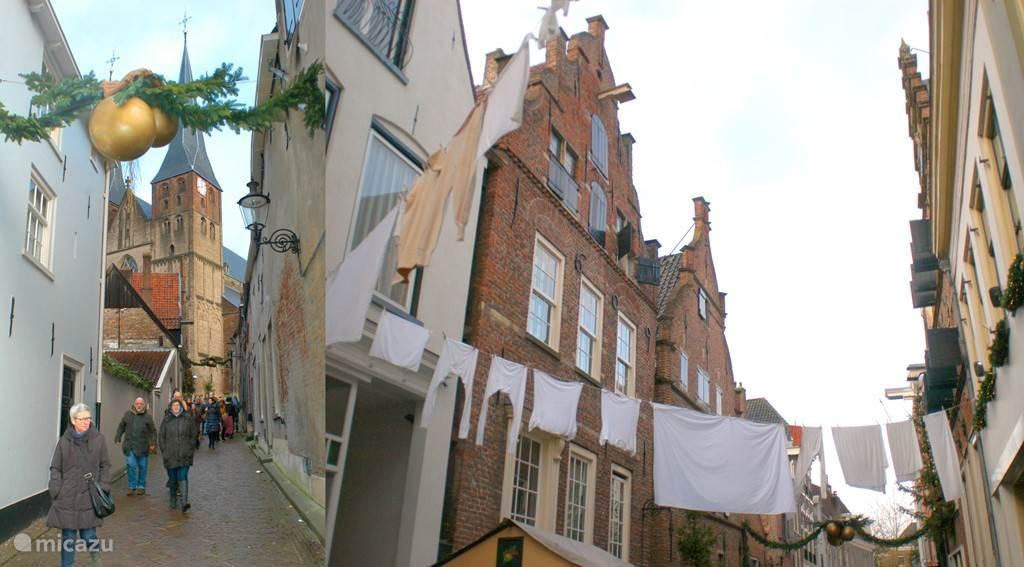 Historische Hanzestad Deventer op slechts 15 rijden.