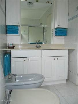 The bathroom of the master bedroom