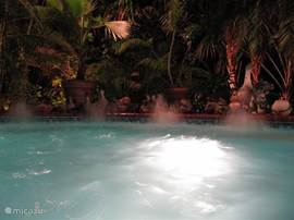 Evening in the jacuzzi under the palms for the ultimate holiday feeling