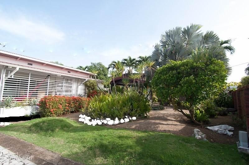 Een deel van de voortuin. In de tuin staan ongeveer 14 palmsoorten en nog vele andere tropische planten zoals de typische Surinaamse bloem: de roodgekleurde Faya Lobi (vurige liefde).