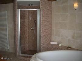 badkamer beneden met regendouche en handdouche.