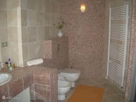 badkamer beneden wc en bidet Wastafelmeubel ingebouwd met dubbele waskommen.