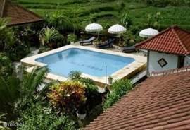 Villa Mega met zwembad  temidden van de rijstvelden bij dessa Temega met uitzichten op Gunung Agung en Lempuyang. U kunt uitrusten en wordt op uw wenken bediend. Samen met de aanwezige gids/ chauffeur bepaalt u uw eigen programma dit is allemaal inclusief