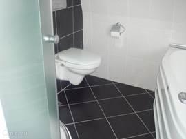 Badkamer op de verdieping: schuifwanden van de douche, toilet en randje van het ligbad.