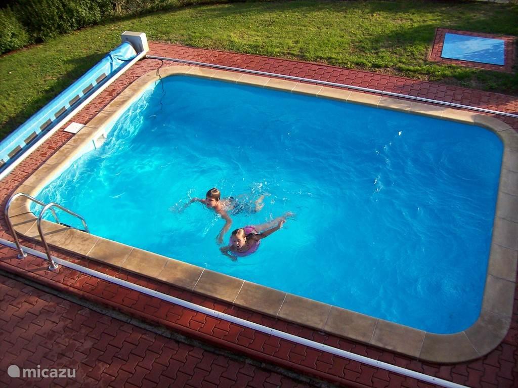Een feest om hier te zwemmen