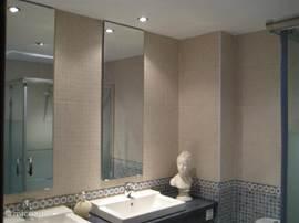 Badkamer met ruime douche (120x80)