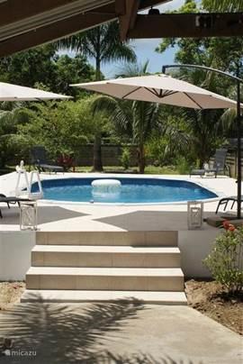 Het zwembad ligt verhoogd in de tuin, zodat er geen beesten in kunnen komen, en er geen problemen zijn bij zware regenval.