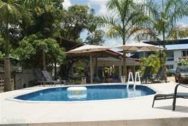 Zicht op het zwembad en het huis vanuit de ruime achtertuin. Er staan 6 ligstoelen op het terras rondom het zwembad.
