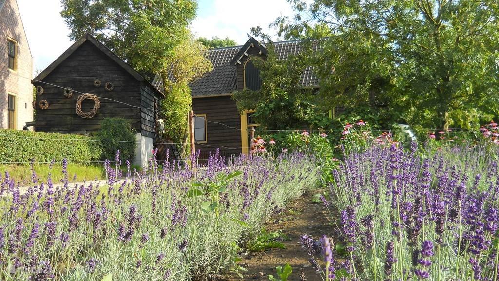 Vakantiehuis Nederland, Gelderland, Deil vakantiehuis Koetshuis `t Geyn - Landgoed Noorden