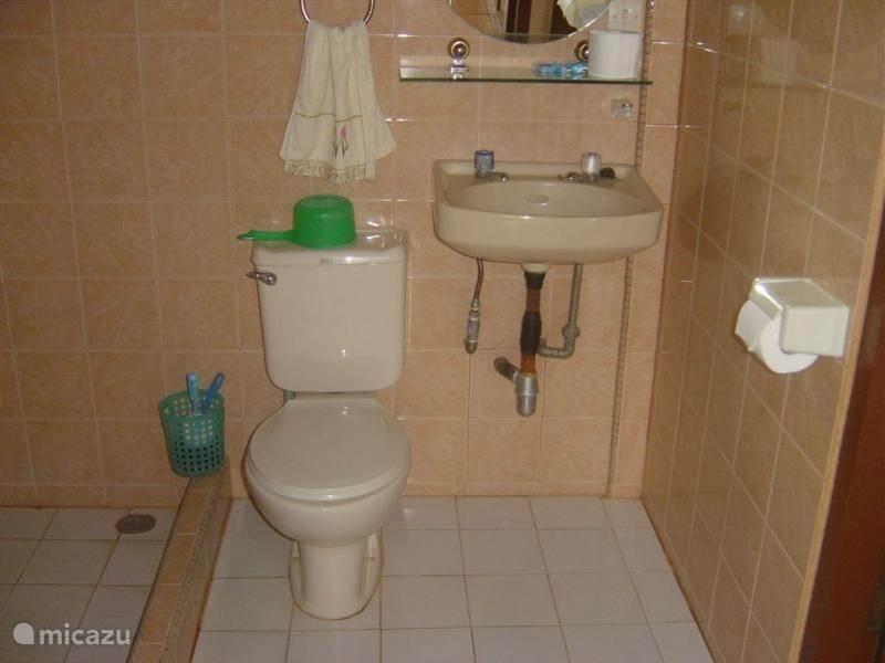 The toilet unit