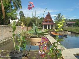 Horas Family Home, Exclusive & Excellent. Horas is a detached cottage on Lake Toba, Tuk Tuk, Samosir, Sumatra. Ideal for your vacation, honeymoon or to overwinter, swimming at the door. Enjoy the orchids in the garden.