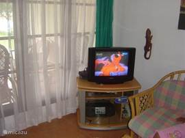 TV with international programs