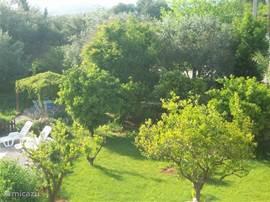 De tuin gezien vanaf terras vakantie accommodatie