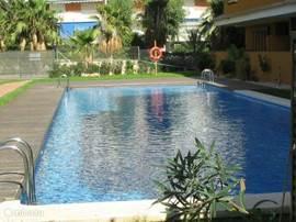 Het verwarmde zwembad