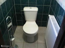 Also the toilet is not re-tiled and renovated