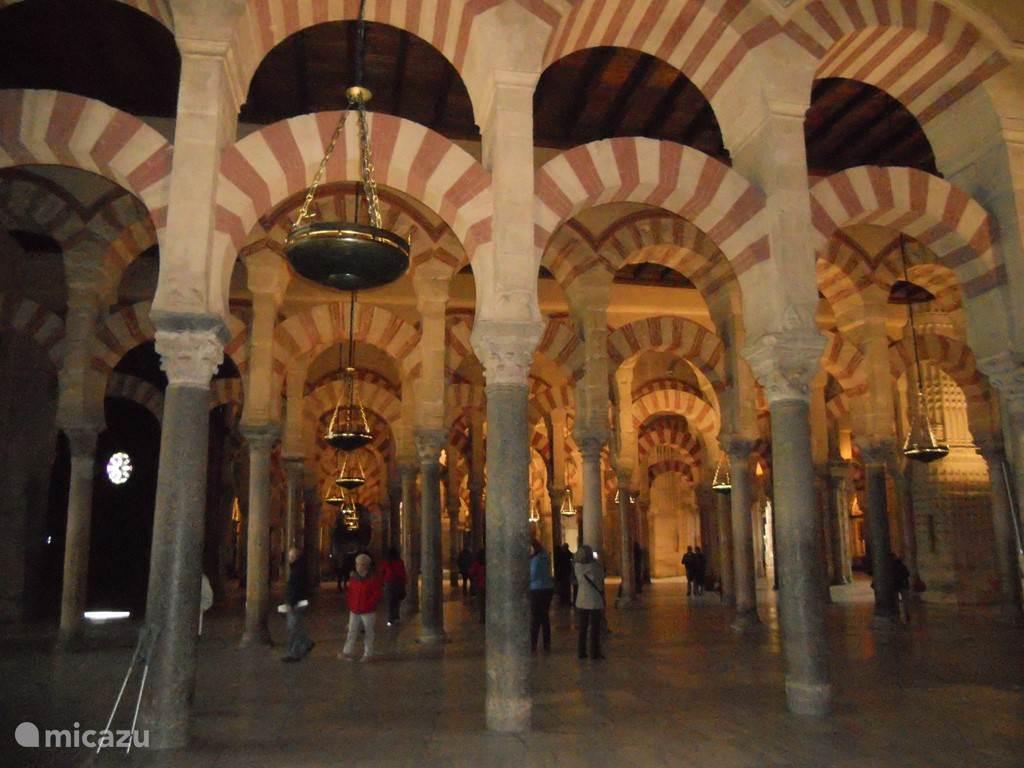 Mezquita in Córdoba op 2 uur afstand