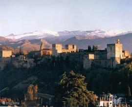 Die Alhambra, wurden die arabischen Paläste im 12. Jahrhundert erbaut. Nur wenige Gehminuten von Ihrer Wohnung!