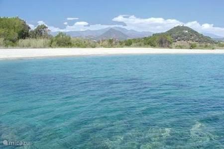 wonderbaarlijk stranden