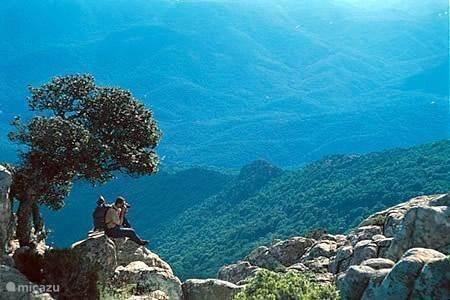 Parco Nazionale del Gennargentu