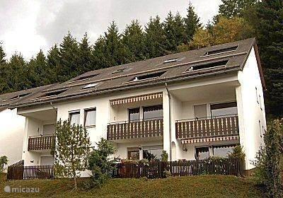 Vakantiehuis Duitsland, Sauerland, Niedersfeld - Winterberg appartement Appartement Niedersfeld