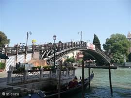 Venetie met de boot vanuit Porec