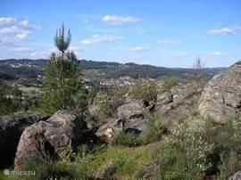 In de omgeving van het huis kan heerlijk gewandeld worden. In het gebied lopen vele paadjes langs akkertjes, wijngaarden en bossen.