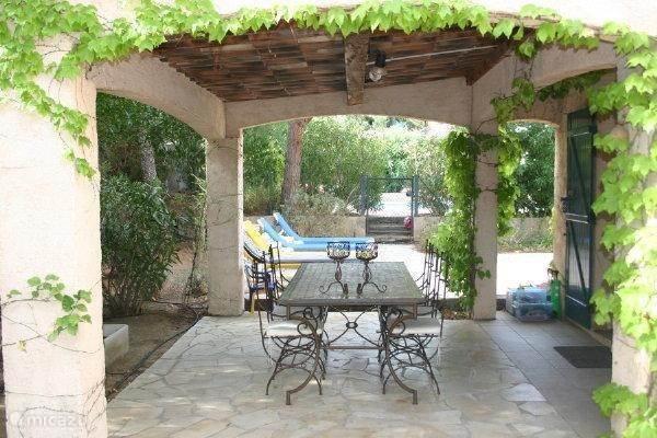 Terraces and garden