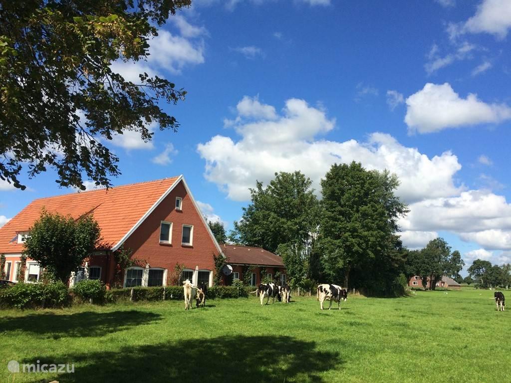 Vakantiehuis Duitsland, Oost-Friese Waddeneilanden – villa OstfrieslandVakantieVilla