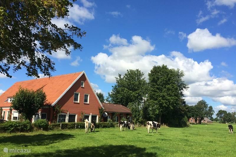 Vakantiehuis Duitsland, Oost-Friesland, Aurich Villa OstfrieslandVakantieVilla