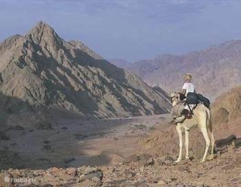 Is die Sinaï nou echt zo mooi?